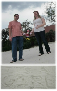 Our Gender Reveal Photo